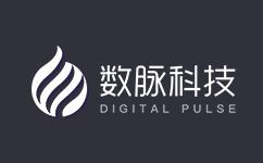 数脉科技 – 低价香港物理服务器 双程CN2+BGP线路直连 360元/月起