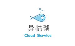 异株湖CloudService – 美国安畅CN2裸金属8核32G30M ip34个 750/月