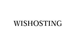 wishosting – 限时法国ovh高防大硬盘vps促销,200G硬盘,2核8G,250M无限流量,$29/季